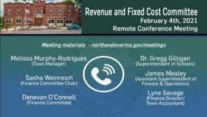 Revenue And Fixed Cost Committee - 02.04.2020