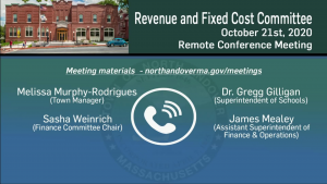 Revenue And Fixed Cost Committee - 10.21.2020