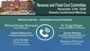 Revenue And Fixed Cost Committee - 11.12.2020